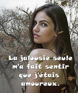 proverbes  d'amour