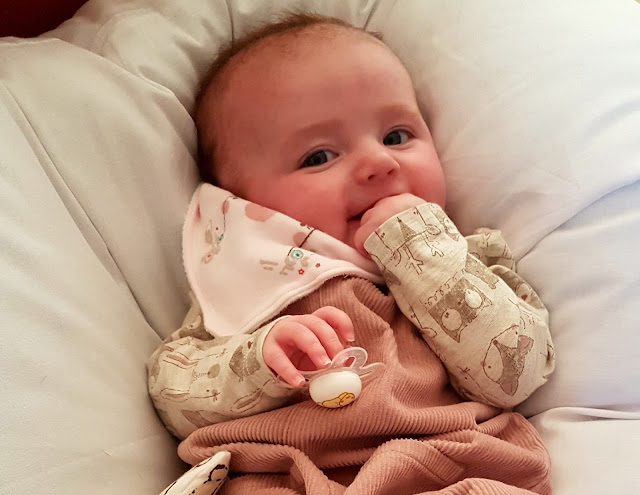 Image of a baby girl looking cheeky whilst holding a mam dummy/ pacifier
