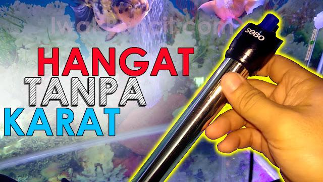 Rekomendasi Water Heater Anti Karat: SOBO 50W & 100W - Penghobi Ikan Hias Wajib Punya Ini