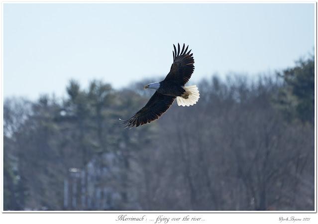 Merrimack: ... flying over the river...