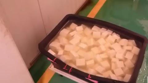Rágcsálóürüléket találtak egy budapesti tofugyártóüzemben – Gyomorforgató felvétel