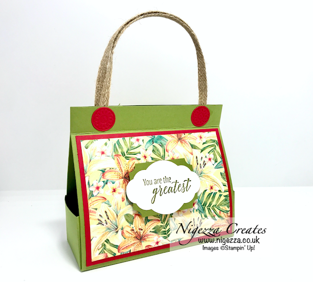 Nigezza Creates with Stampin' Up! Tropical Oasis No Cut, Fold Flat, Gift Bag