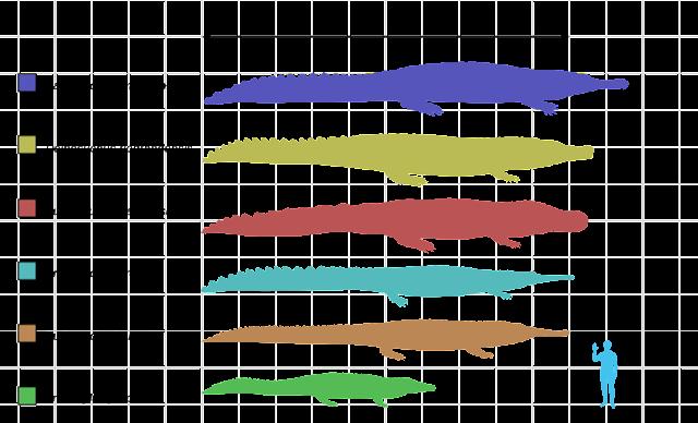 Comparación tamaño de los cocodrilos más grandes de la historia