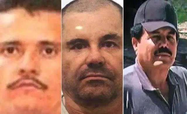 Las alianzas que han tenido que hacer El Cártel de Sinaloa y El CJNG para exterminarse