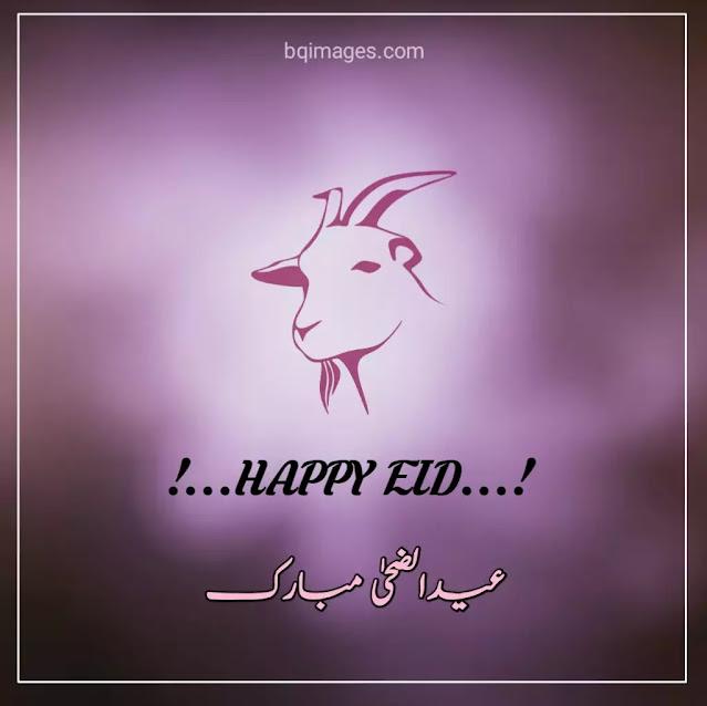 eid ul azha images