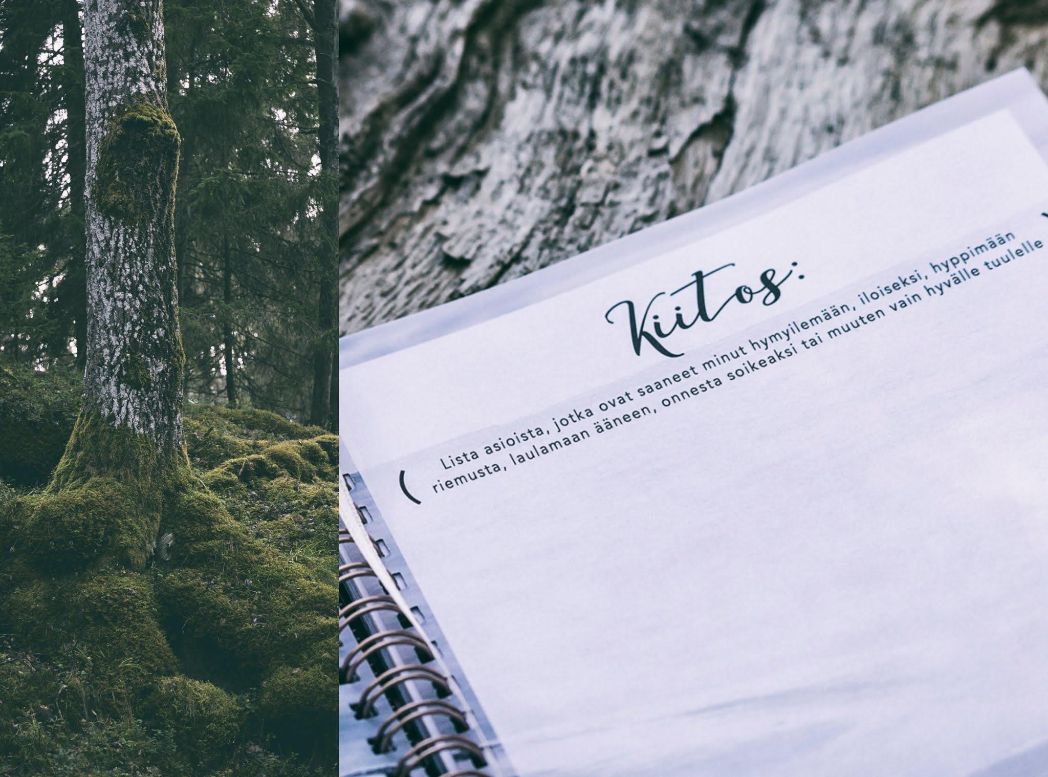 Hyvä Vuosi-kalenteri Hyvä Vuosi 2021, almanakka, kalenteri, hyvän mielen kalenteri, kuvakalenteri, mietelausekalenteri, kiitollisuuspäiväkirja, elämänohje, Visualaddictfrida, bloggari, valokuvaaja, Frida Steiner, Photographer, blogi, visualaddict,