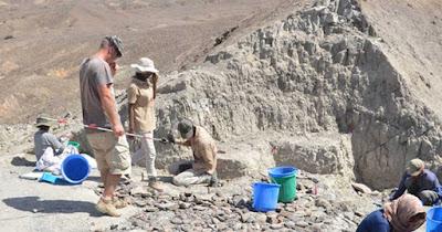 """I ricercatori hanno trovato la collezione di strumenti in pietra a scaglie """"Oldowan"""" nella regione di Afar, nell'Etiopia nord-orientale."""