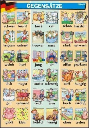gegenteile von wörtern
