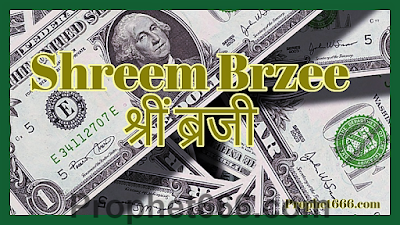 Review of Shreem Brzee New Age Miracle Money Mantra