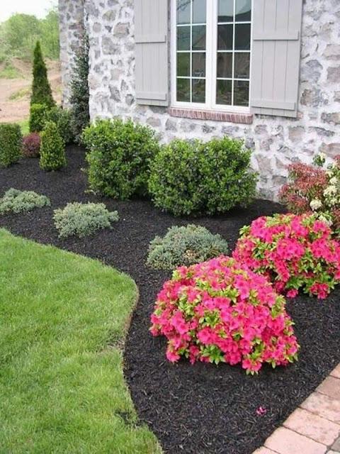 Perfect backyard design ideas for beginners