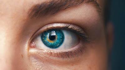 Prototipe Mata Biomimetik Membawa Cyborg Lebih Dekat dengan Kenyataan