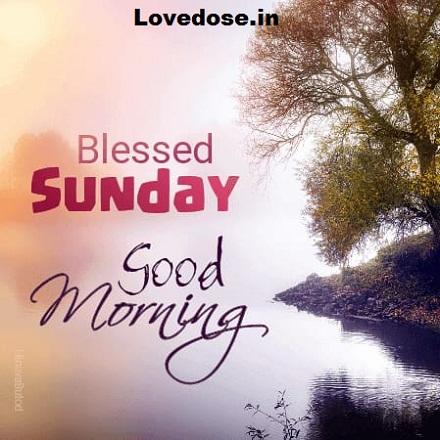 wonderful sunday wishes