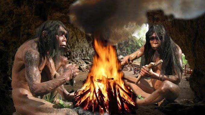 Ateşi bulan Homo Sapiensin Modern İnsana Dönüşmesindeki hızlı Etkisi