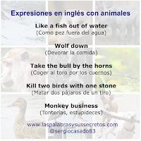 expresiones en inglés con animales, idioms, aprender inglés, curso de inglés, expresiones en inglés