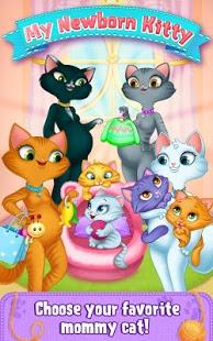 happy birthday cat family