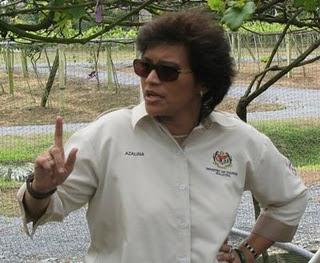 Hasil carian imej untuk Azalina Osman Said