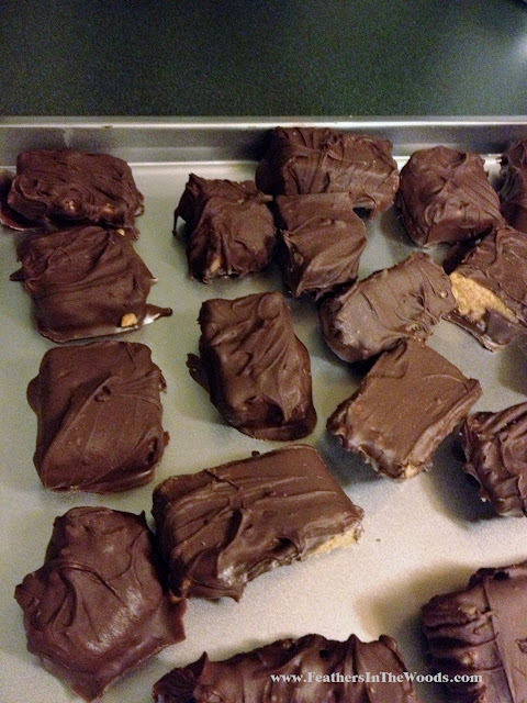 homemade peanut butter candy