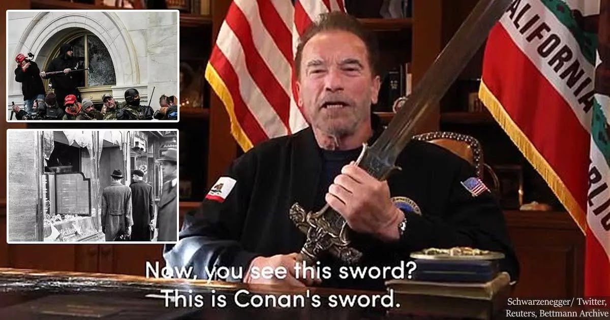Schwarzenegger Releases Video Comparing Trump Supporters To Nazis And Pledging His Allegiance To President Biden