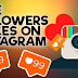 Instagram Followers and Likes Free Trial