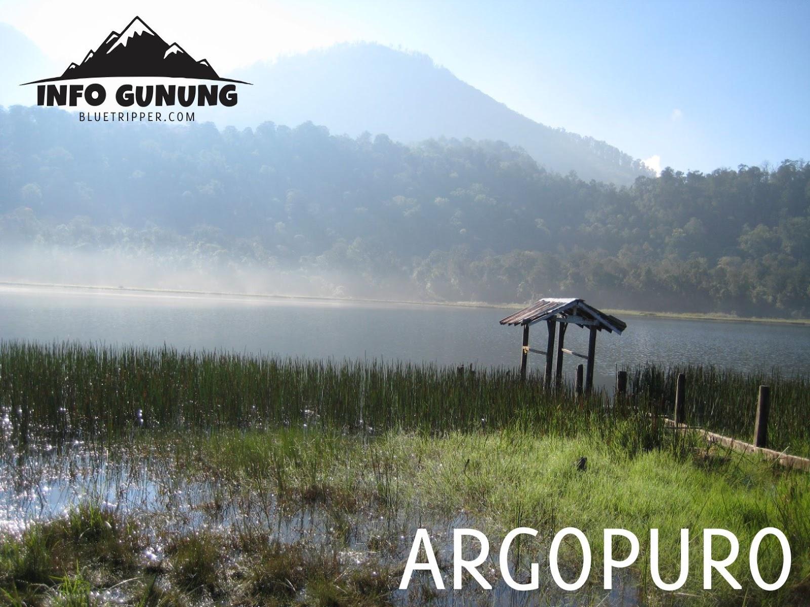 Gunung Argopuro 3 088 Mdpl Xplore Wisata Operator Wisata Dan Provider Pendakian Gunung