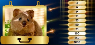 To eliminate the next lowest number of points, take a look at this adorable critter! Which country is he native to?