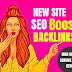 I will increase seo backlink your website google,alexa rank