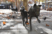 Canberra Public Art | Amanda Stuart