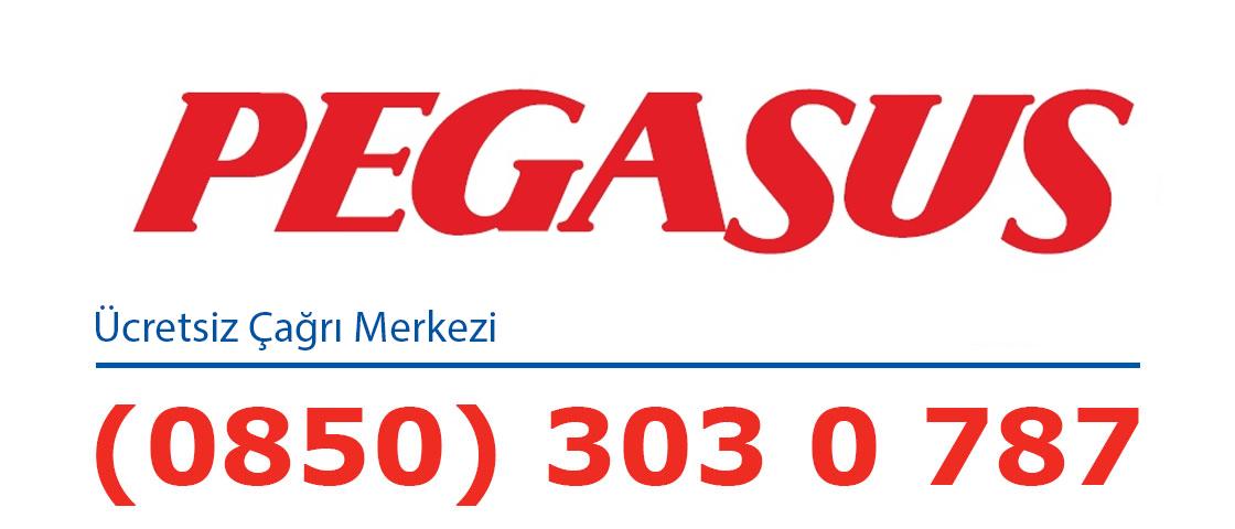 Pegasus Havayolları Logo