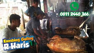 BBQ Kambing Guling di Lembang, kambing guling di lembang, kambing guling lembang, bbq kambing guling lembang, kambing guling,