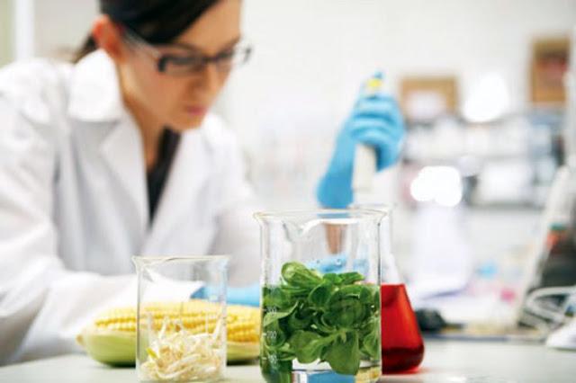 Γεωπόνο ή Τεχνολόγο Τροφίμων ζητάει για πρόσληψη επιχείρηση στην Αργολίδα