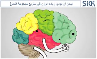يمكن أن تؤدي زيادة الوزن في تسريع شيخوخة الدماغ