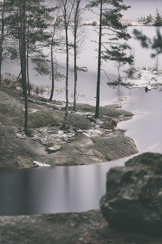 Nuuksio, Espoo, Kansallispuisto, luonto, nature, luontokuva, naturephotography, photographer, valokuvaaja, Frida Steiner, Espoo, Visualaddict, valokuvausblogi, Visualaddictfrida, valokuvaaminen, metsä, woods, park, national park, visitfinland, Finland, Nordic, Scandinavia, outdoors, outdoorphotography