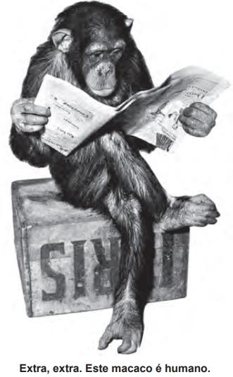 Extra, extra. Este macaco é humano.