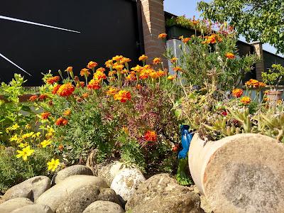 giardino-sassi-arredo