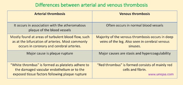 What are the differences between arterial thrombosis and venous thrombosis?
