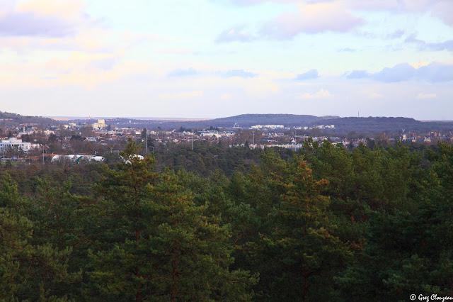 La ville de Fontainebleau dans son écrin de pins