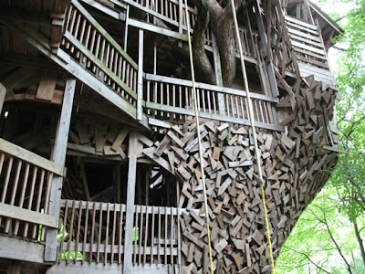The World's Biggest Treehouse (14) 6
