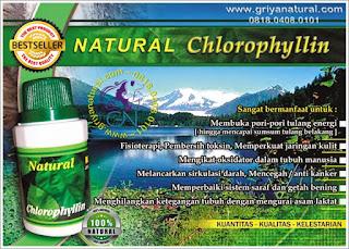 0818.0408.0101 (XL), darah kotor, obat tekanan, obat tekanan, racun alami, detox alami, penawar racun, pembersih tubuh, minuman detox, detoksifikasi tubuh, detoksifikasi alami,