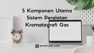 5 Komponen Utama Sistem Peralatan Kromatografi Gas