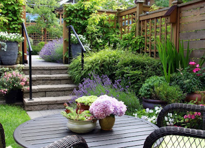 Picking the perfect Location for your Garden