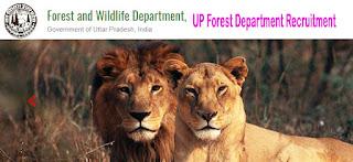 UP Forest Department Recruitment upforest.gov.in Online Form