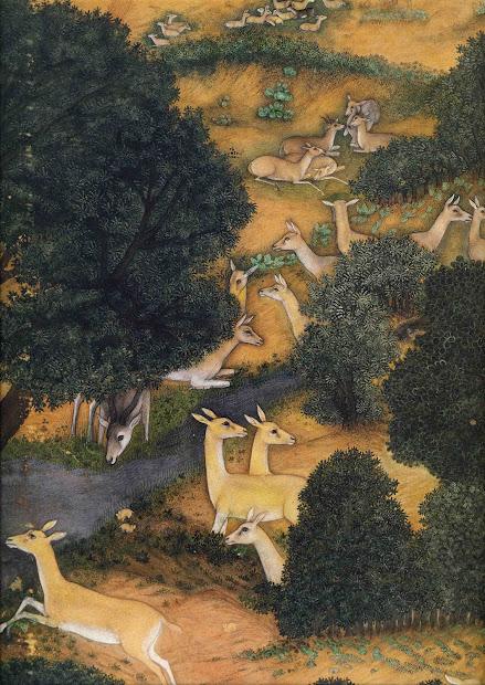 Indian Miniature Paintings Deer