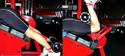 Flexión bíceps femoral ejercicio hombre rutina