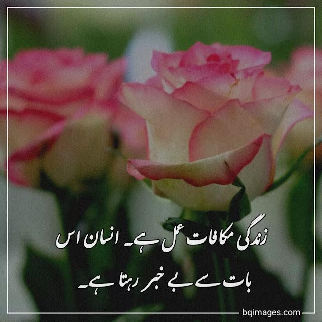 Makafat e Amal Quotes