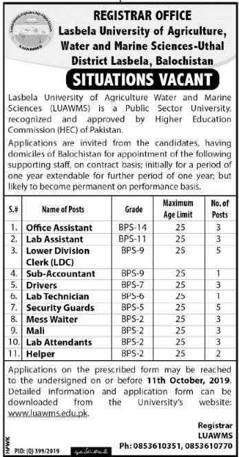 Jobs in Lasbela University 2019