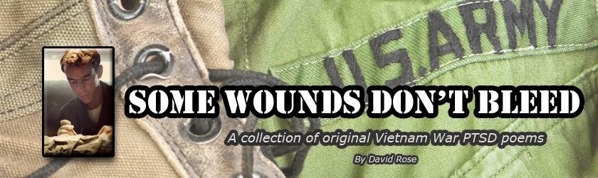 Vietnam War PTSD Poems
