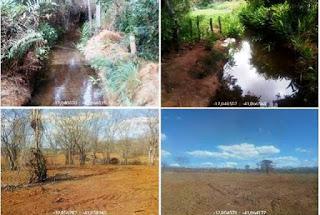 Área desmatada ilegalmente