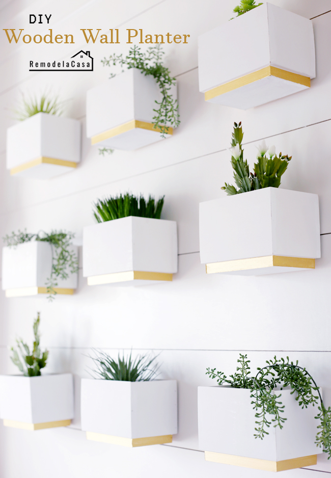 white and gold wooden planters on wall