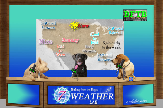 BFTB NETWoof Weather Lab with forecast map in back screen