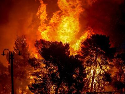 Οι φωτιές στα δάση
